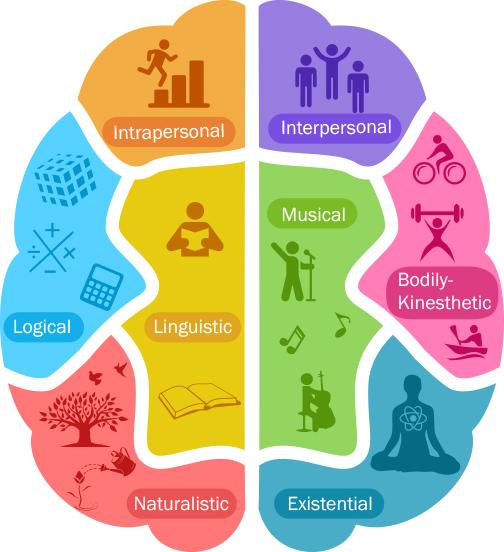 Les 8 formes d'intelligence, toutes aussi importantes les unes que les autres : kinestique, linguistique, naturaliste, logico-mathématiques, intra personnelle, inter personnelle, musicale, existentielle